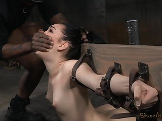 After a blowjob Aria Alexander got the brush concentrated cunt fucked by a guy